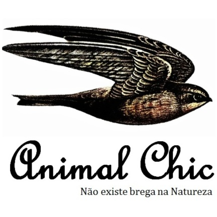 andorinha_logoquadrado