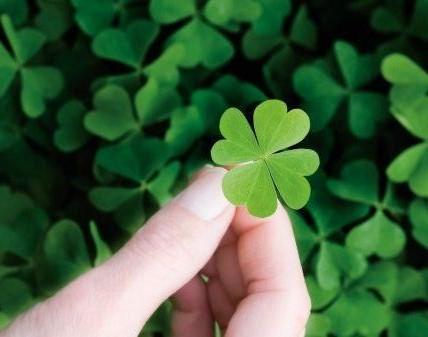 Simpatia-para-ter-sorte-em-tudo-trevo-da-sorte